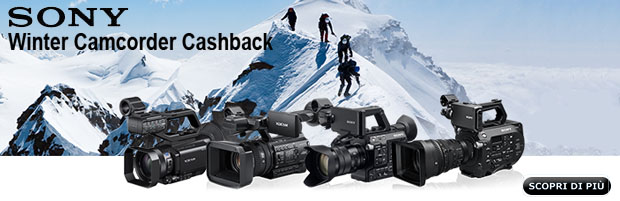 Sony Winter Camcorder